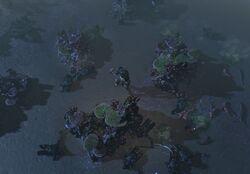The Brine King's Reef area screenshot.jpg