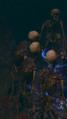 Ancient Bonestalker.png
