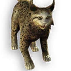 Farric Lynx Alpha