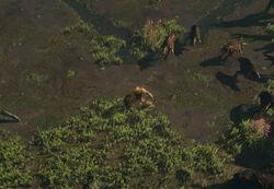 The Mud Flats (Act 1) area screenshot.jpg
