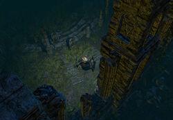 The Fellshrine Ruins (Act 2) area screenshot.jpg