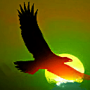 AspectoftheEagle passive skill icon.png