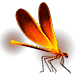 Firefly (3 of 7) inventory icon.png