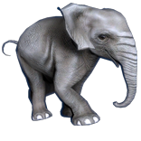 Baby Elephant Pet inventory icon.png