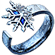 Call of the Brotherhood winterheart inventory icon.png