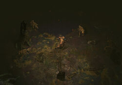 The Fetid Pool area screenshot.jpg