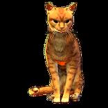 Orange Cat Pet inventory icon.png