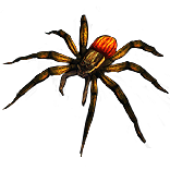 Nursery Web Spider Pet inventory icon.png