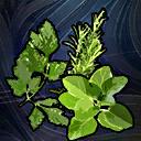 MasterHerbalist (PathFinder) passive skill icon.png