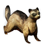 Ferret Pet inventory icon.png