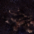 Delve Biome Fungal Caverns.png