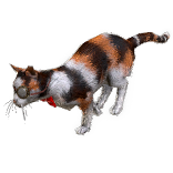 Heist Cat Pet inventory icon.png