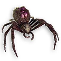 Fenumal Plagued Arachnid