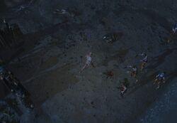 Сумрачное взморье (Акт 1) area screenshot.jpg