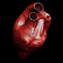 Heart2005.png