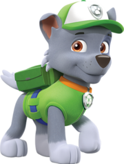 Rocky (PAW Patrol).png