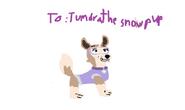 Tundra gift