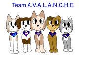 Teamavalanche