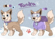 Tundra ref 2016
