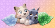 Snuggly pups