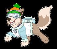 Snow patrol uniform