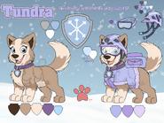 Tundra ref 2019