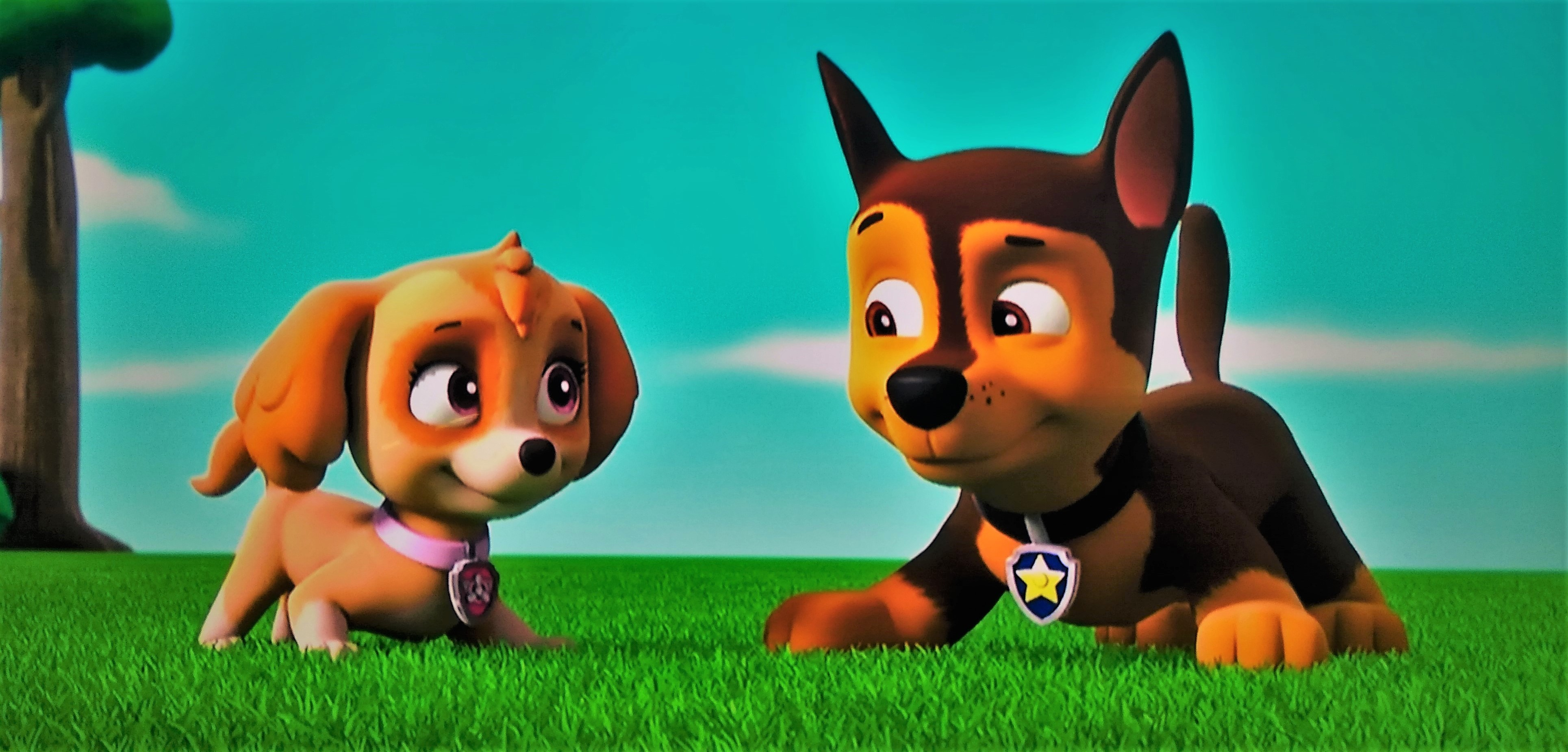 Category Skye Paw Patrol Relation Ship Wiki Fandom