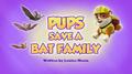 Pups Save a Bat Family (HQ)
