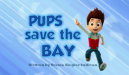Pups Save the Bay