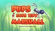 Pups Save Tiny Marshall (HQ)