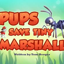 Pups Save Tiny Marshall (HQ).png