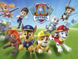 PAW Patrol (team)/Trivia