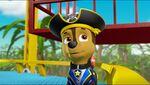 Pirate Pups 80