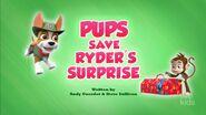 Pups Save Ryder's Surprise (temp HQ)