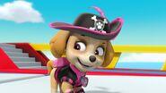 Pirate Pups 27