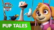 PAW Patrol Pups Save the Big Bad Bird Crew Rescue Episode PAW Patrol Official & Friends!