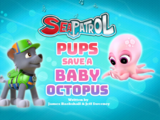Sea Patrol: Pups Save a Baby Octopus