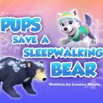 Pups Save a Sleepwalking Bear (HQ).png