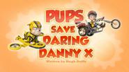 Pups Save Daring Danny X