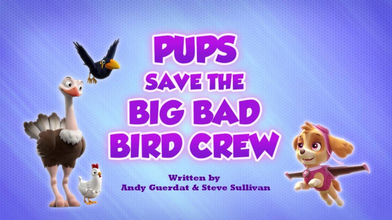 Pups Save the Big Bad Bird Crew