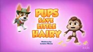 Pups Save Little Hairy (HQ)