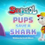 Pups Save a Shark (HQ).png