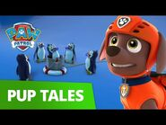 PAW Patrol - Pups Save Cap'n Turbots Missing Fish! - Rescue Episode - PAW Patrol Official & Friends!