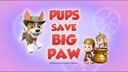 Pups Save Big Paw (HQ)