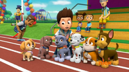 Mayor's Race (Ryder petting Pups