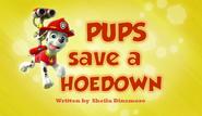 Pups Save a Hoedown