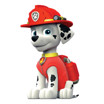 8 Piece Paw Patrol Color your own character