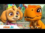 PAW Patrol Pups Celebrate Baby Dino's Birthday! - Nick Jr.