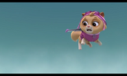 Cat Skye- Pups Save a Flying Kitty- oh no