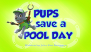 Pups Save a Pool Day